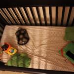 Toddler Hoarding? (Wordless Wednesday)
