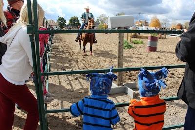 A Country Fair
