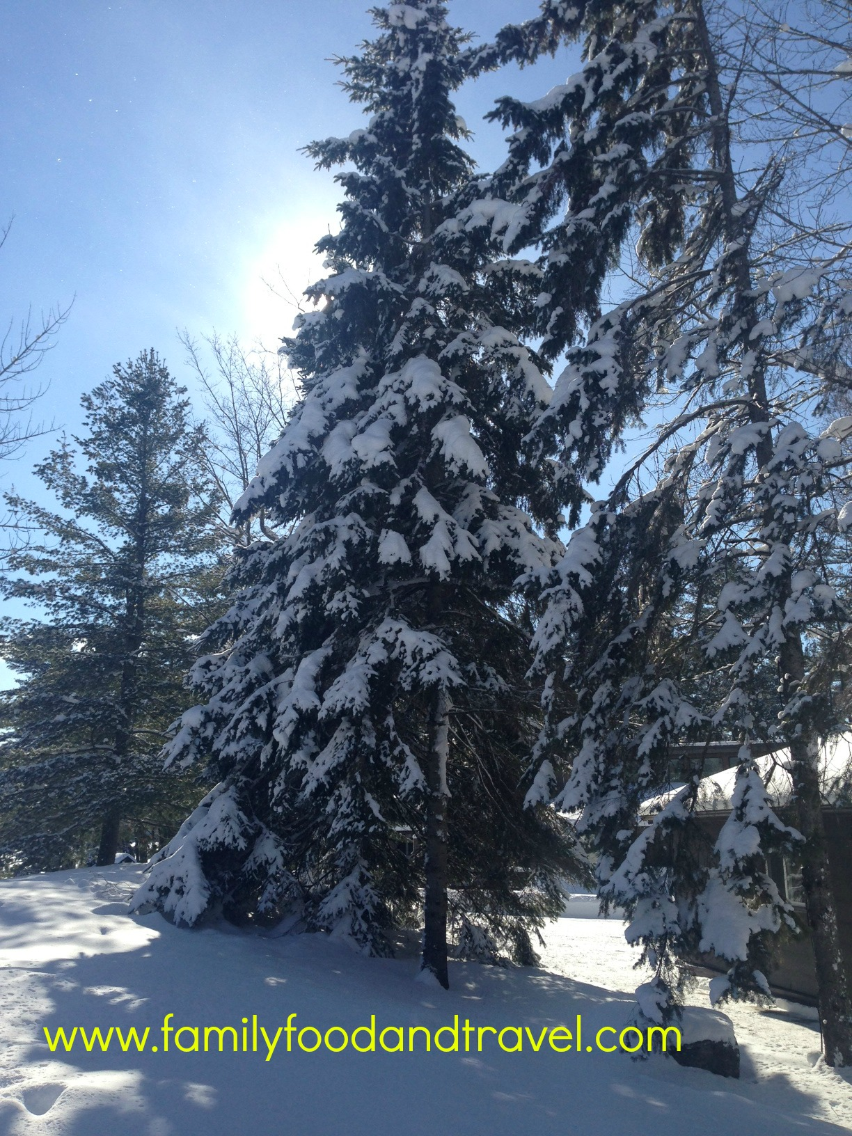 8 Things I Love about Winter