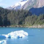 I is for Iceberg