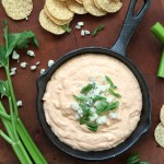 Spicy Buffalo Cheese Dip