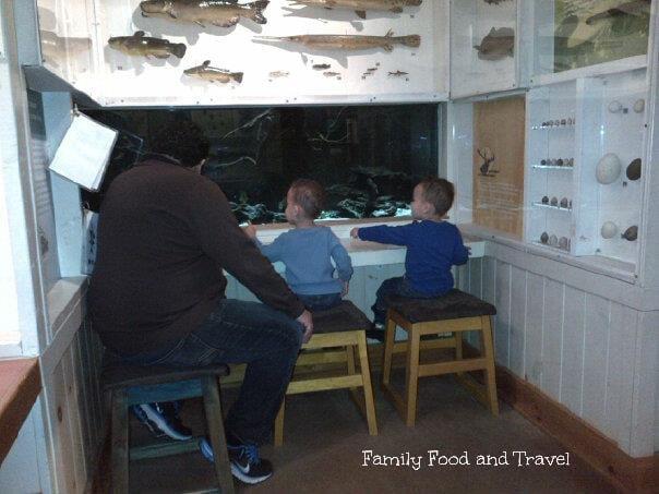ontario family travel