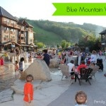 Blue Mountain Village Perfect for Families