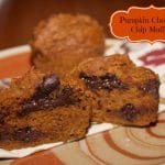 Low Fat Pumpkin Chocolate Chip Muffins