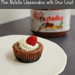 Mini Nutella Cheesecake with Oreo Crust