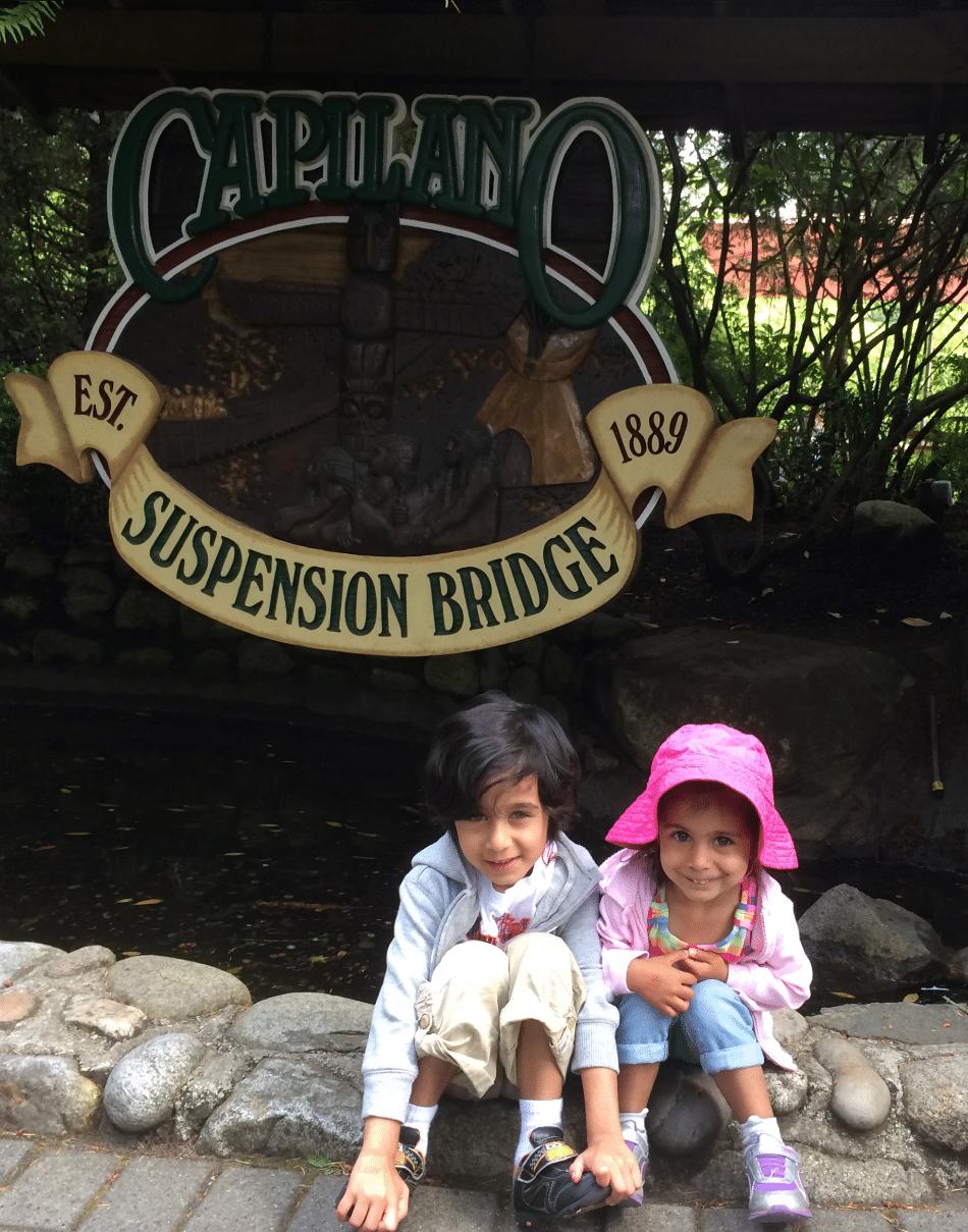 cap susp bridge 1