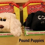 Pound Puppies are Back!
