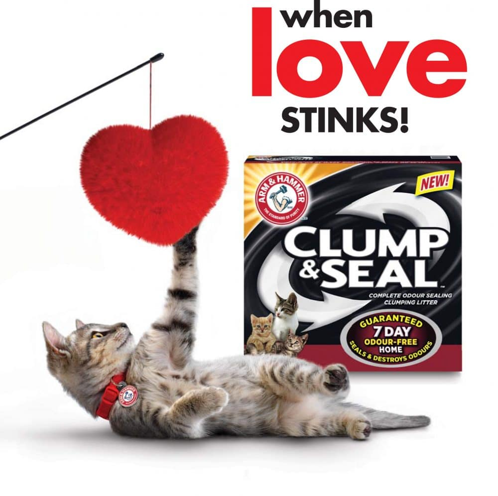 Keeping My House Smelling Fresh with Arm & Hammer Clump & Seal