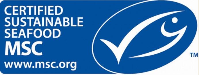 MSC-1-logo1-700x273