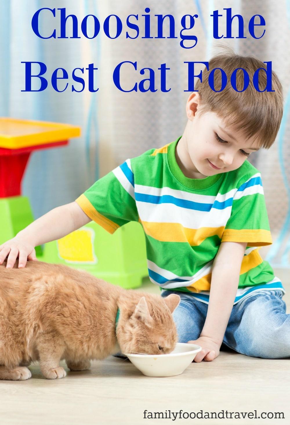Choosing the Best Cat Food