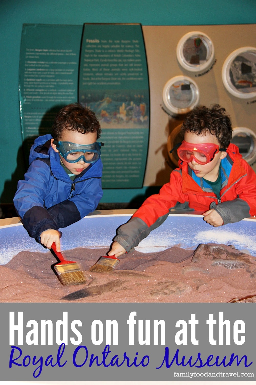 Hands on fun at the Royal Ontario Museum