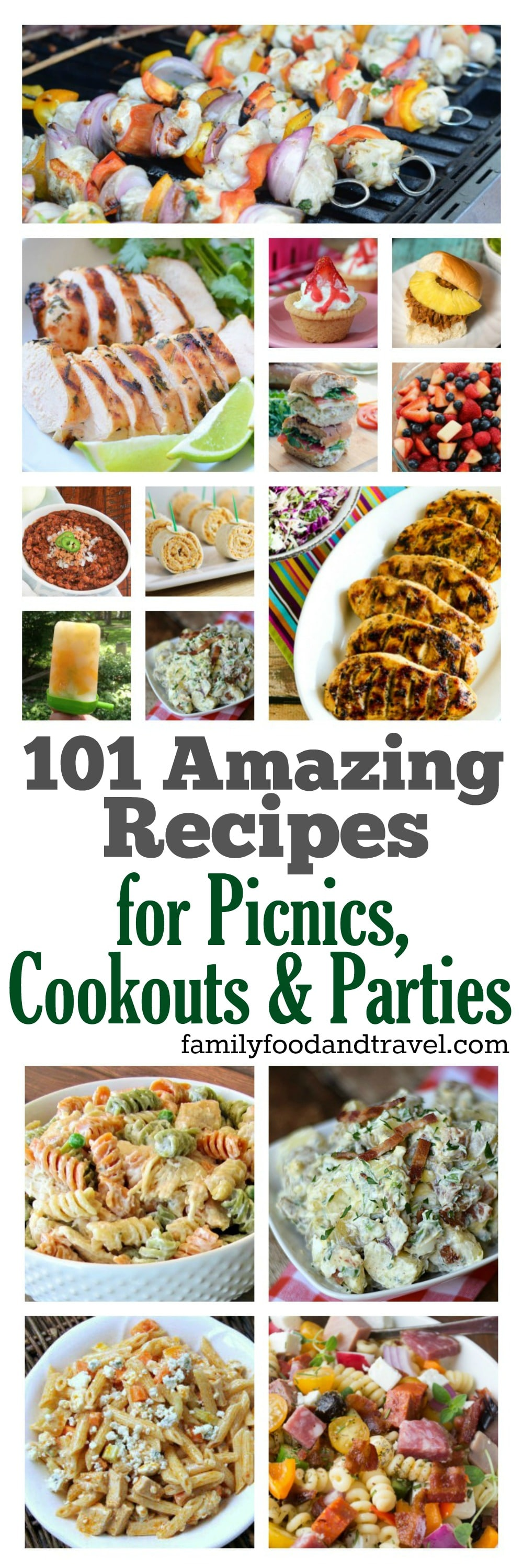 101 Amazing BBQ Recipes for Picnics Cookouts and Parties