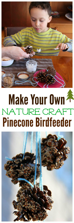 DIY Pinecone Birdfeeder