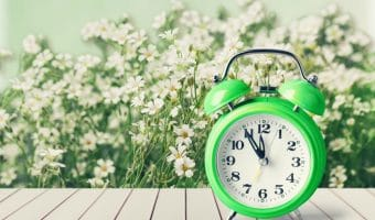 Are You Ready to Spring Forward? Don't Forget These Spring Tasks #churchanddwight