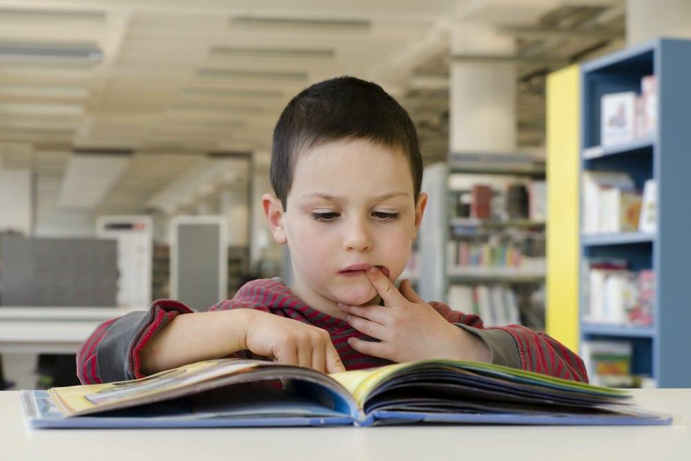 Encouraging my boys to read