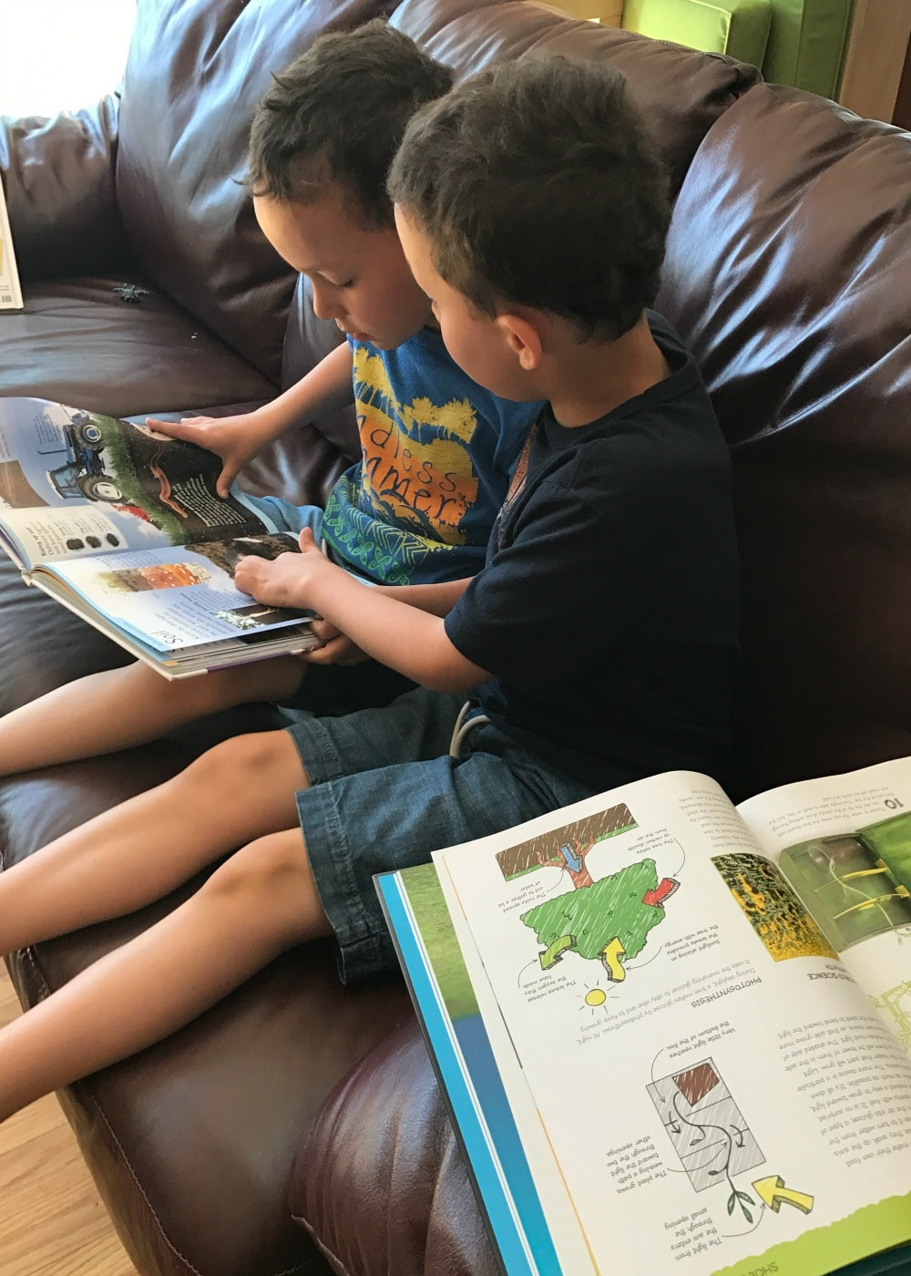 Encouraging My Boys to Read with the TD Summer Reading Club