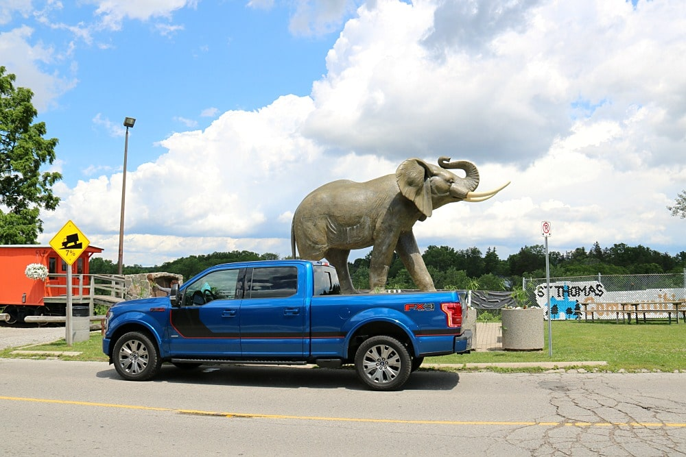 Jumbo the Elephant and Ford F150