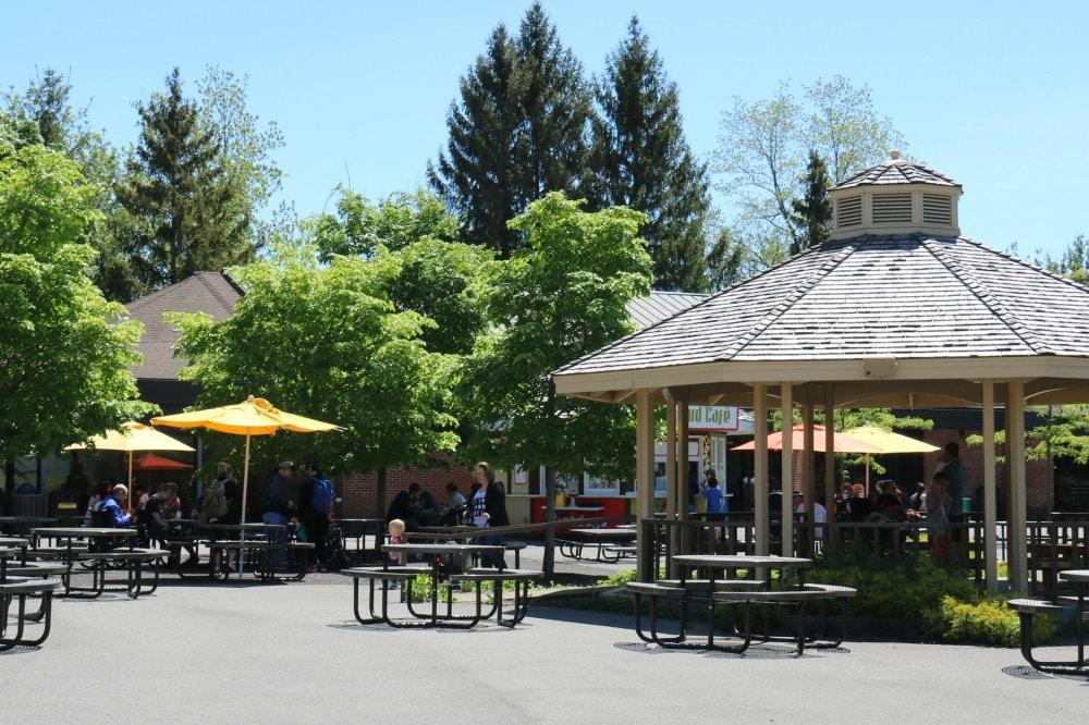 Syracuse Zoo - Eating Area
