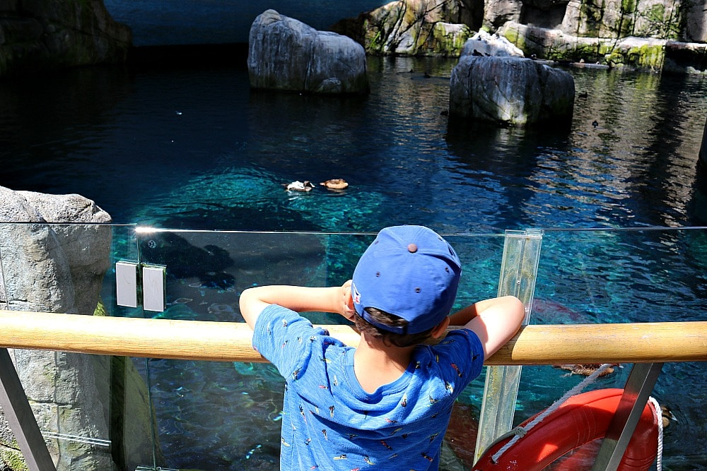 Montreal With Kids - Biodome