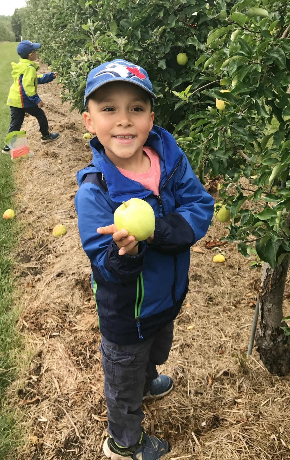 Chudleigh's Best Family Apple Farm