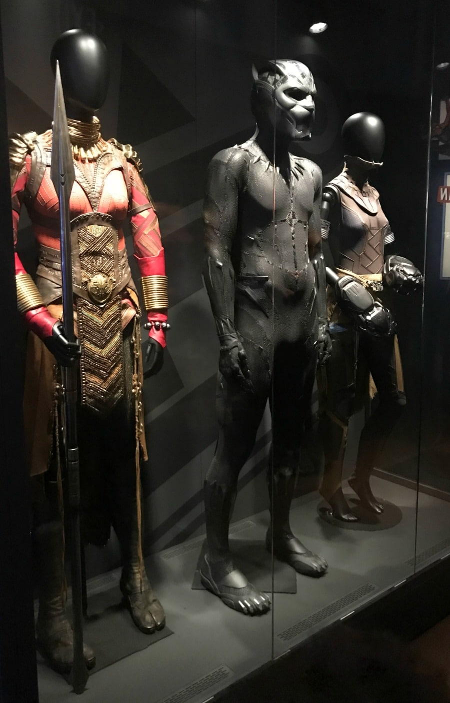 Marvel Universe Movie Costumes Black Panther
