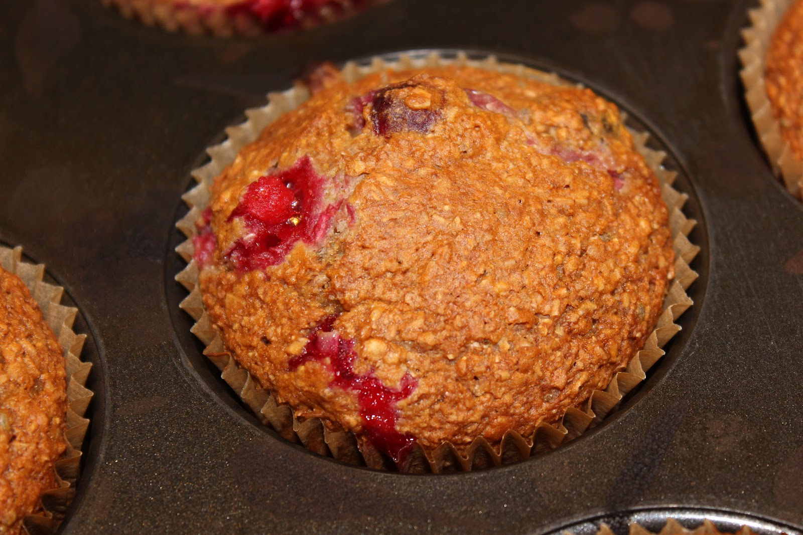 Coconut and Cranberry Bran Muffins - Family Food And Travel